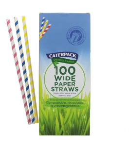 Straws compostable paper - from Shake - Caterpack Yumibio