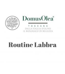 Routine Labbra