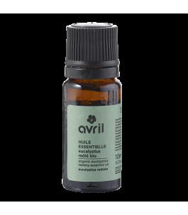 L'huile essentielle d'Eucalyptus - Avril | Yumibio