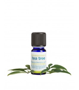 The essential oil of the Tea Tree - The Soap | Yumibio