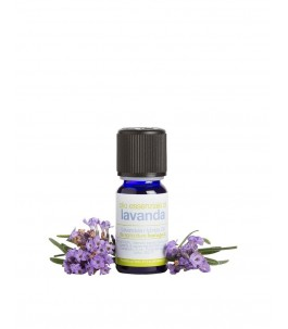 Lavender essential oil - The Soap | Yumibio