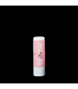 Lip Balm Protective